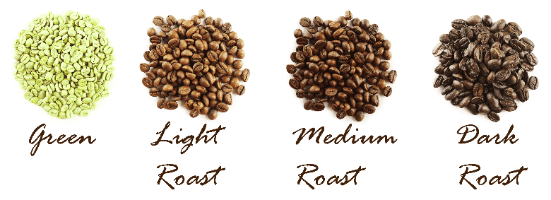 4 different roasted coffee beans from green beans on the left to dark roast on the right