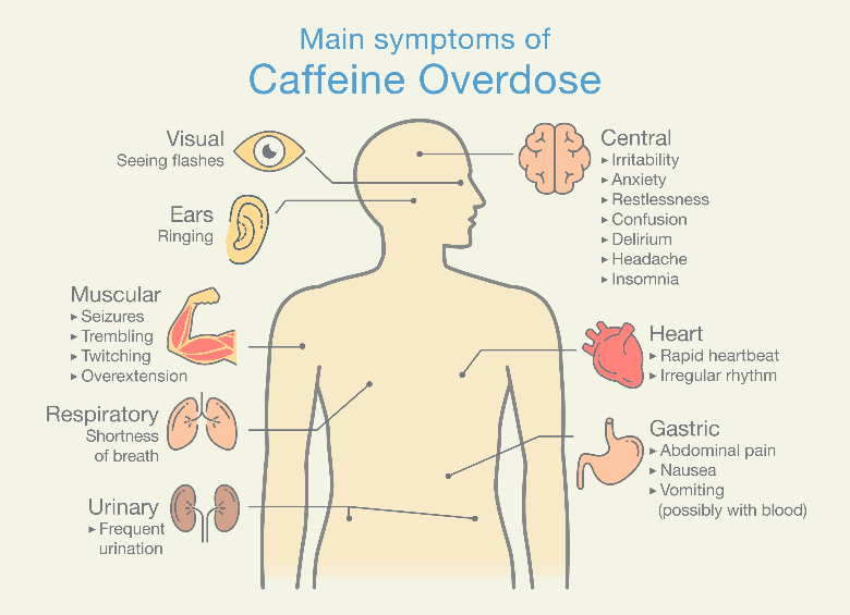 Main symptoms of Caffeine Overdose. Illustration about health check up diagram, negative effects of caffeine