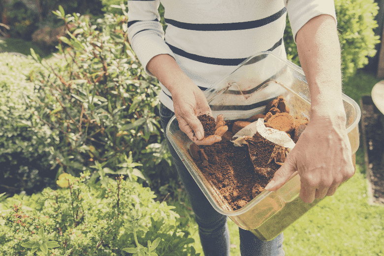 Unused coffee grounds are useful. By bringing to dry for use as fertilizer Used on all plants and for exfoliation, are coffee grounds good for your garden