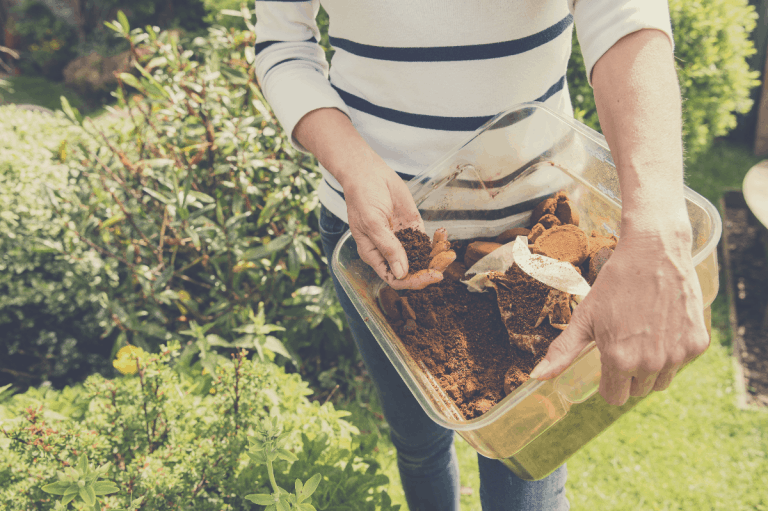 Will Coffee Grounds Kill Ants: How to Get Rid of Ants Naturally