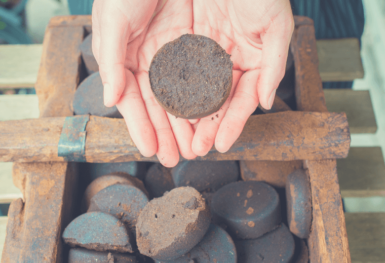 Close-up of human hands holding a piece of old Coffee Grounds after it's brewed, will coffee grounds kill ants