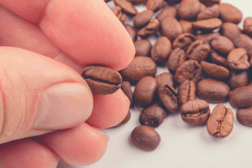 Hand holding a coffee bean between the fingers. Food and drink background, should coffee beans be frozen