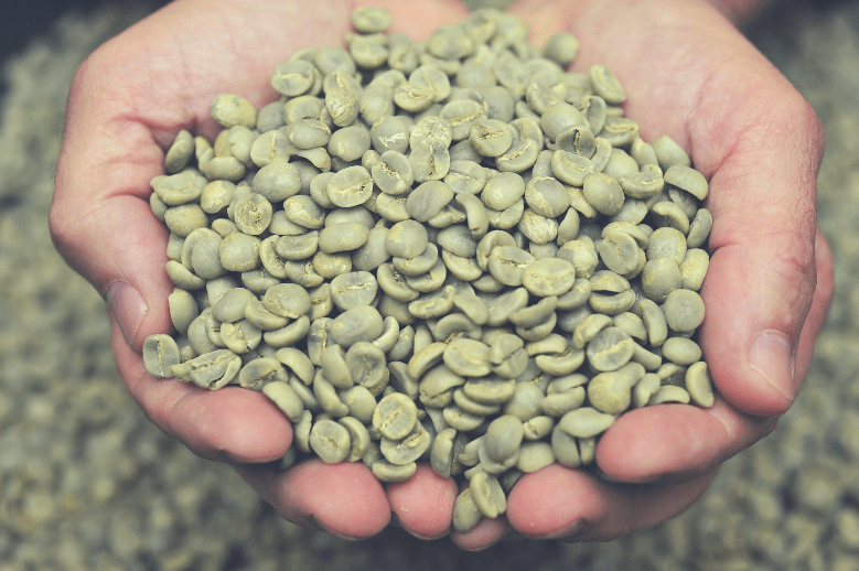 Green coffee beans in farmer's hand, how long do green coffee beans last